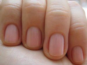 Наращивание ногтей для начинающих в домашних условиях